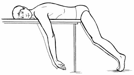 A nyaki gerinc sebészi anatómiája. Állatorvosi artrológia - gerincoszlás