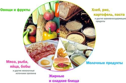 Ananassellerie und Petersilie zur Gewichtsreduktion