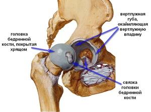 a térd kezelési rendjének deformáló artrózisa)