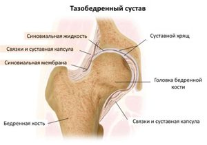 zabliszt és ízületi fájdalmak
